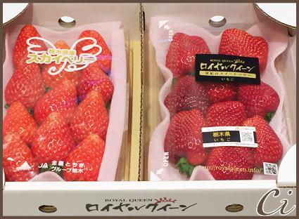 イチゴのコピー